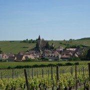 Hunawihr, route des vins d'Alsace