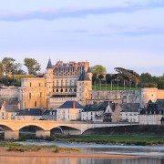 Amboise et son château royal (L. de Serres)