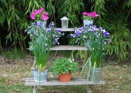 Le Clos Lascazes, chambres d'hôtes Paleyrac (Dordogne) : jardin